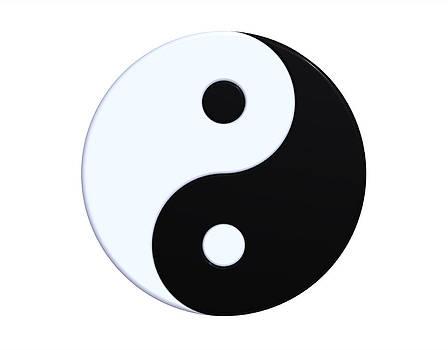 Ying-yang symbol by Borislav Marinic