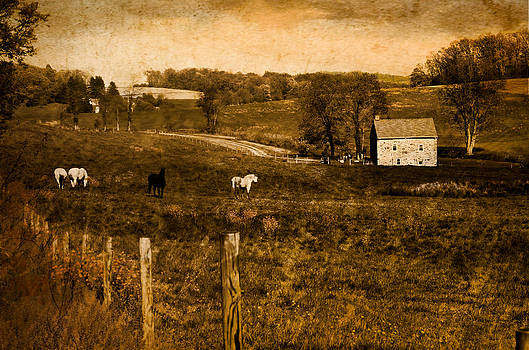 York County Countryside by Tom Wenger