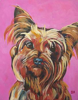 Yorkie - Poppy in Pink by Janet Burt