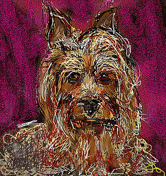 Yorkie by Joyce Goldin