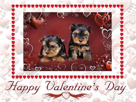 Waldek Dabrowski - Yorkie Valentine Card