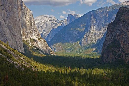 Dennis Cox - Yosemite Grandeur