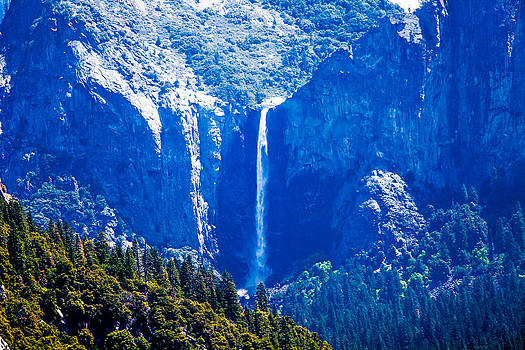 Yosemite N Park 2014 by Brian Williamson