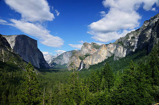 RicardMN Photography - Yosemite National Park