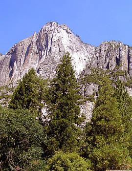 Yosemite Park by Piero Lucia