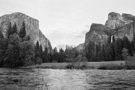 Yosemite Valley by Abbott Moses