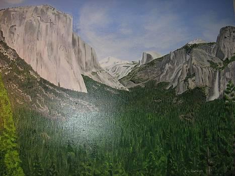 Yosemite Valley by Lloyd  Gardner