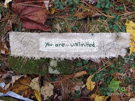 You Are Unlimited by Linda Marcille