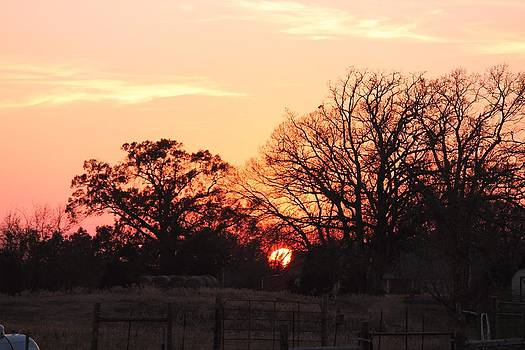 You Can't Fence In An East Texas Sunset by Lorri Crossno