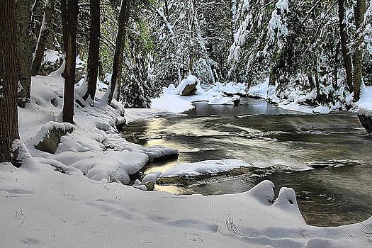 Matthew Winn - Youghiogheny River in Winter
