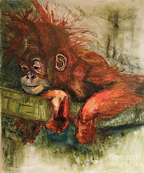 Young Borneo Orangutan  by Cass Oest