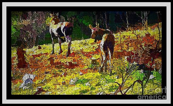 Barbara Griffin - Young Moose in Autumn