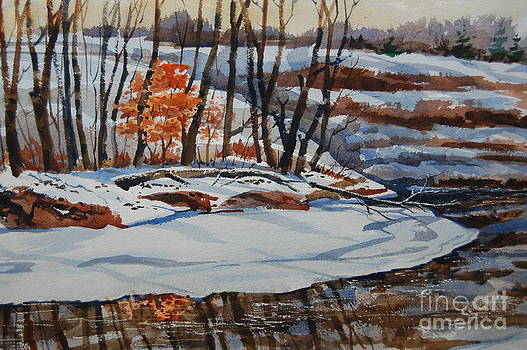 Young Oak in Winter by Bill Dinkins