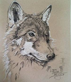 Young Wolf by Lynne Hurd Bryant