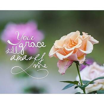 your Grace Still Amazes Me, your by Traci Beeson