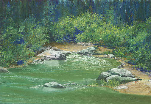 Yuba River California by Martha J Davies