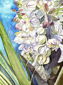 Yucca Blossoms by Michele Ross