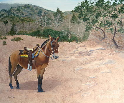 Zachary the Mule by Alicia Fowler