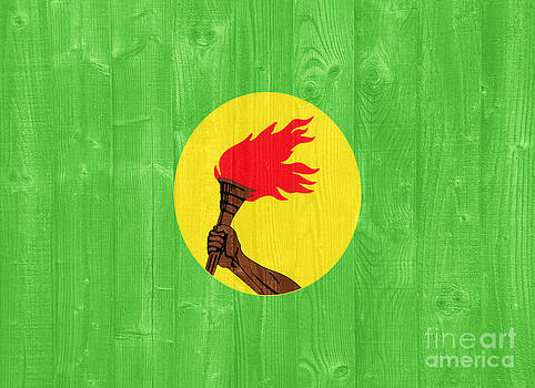 Zaire flag by Luis Alvarenga