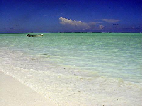 Zanzibar beach 15 by Giorgio Darrigo