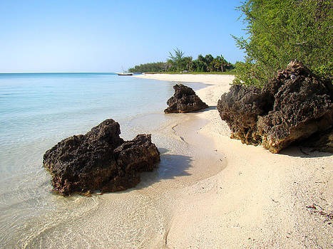 Zanzibar beach 16 by Giorgio Darrigo