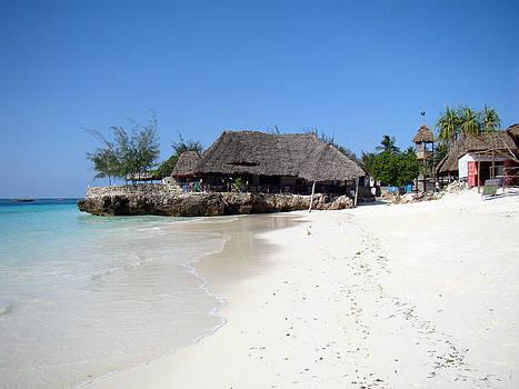 Zanzibar beach 18 by Giorgio Darrigo