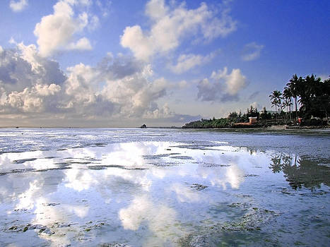 Zanzibar beach 19 by Giorgio Darrigo