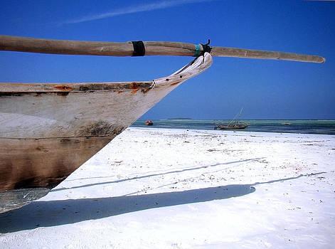Zanzibar boat 18 by Giorgio Darrigo