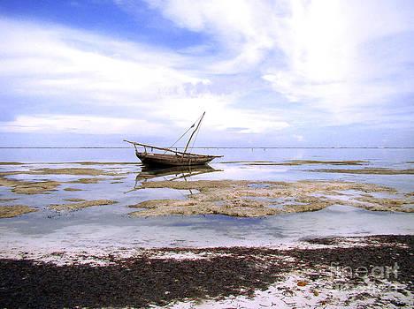 Zanzibar boat 22 by Giorgio Darrigo