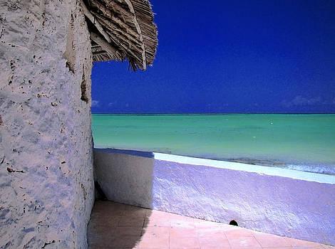 Zanzibar colors 01 by Giorgio Darrigo