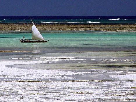 Zanzibar reef 03 by Giorgio Darrigo