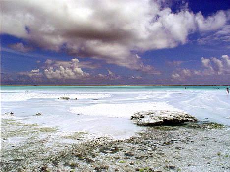 Zanzibar reef 05 by Giorgio Darrigo