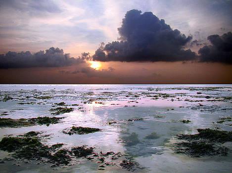 Zanzibar sunrise 04 by Giorgio Darrigo