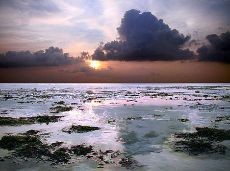 Zanzibar sunrise and low tide by Giorgio Darrigo