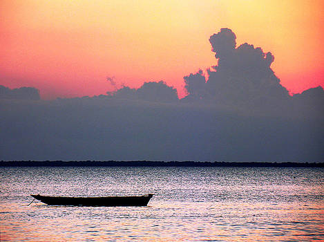 Zanzibar sunset 16 by Giorgio Darrigo
