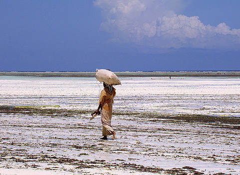Zanzibar woman 32 by Giorgio Darrigo