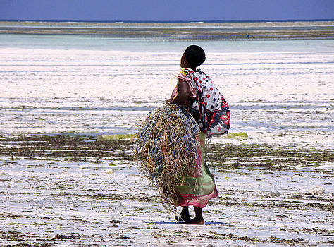 Zanzibar woman 33 by Giorgio Darrigo