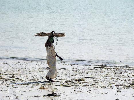 Zanzibar woman 35 by Giorgio Darrigo