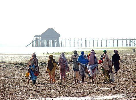 Zanzibar women 07 by Giorgio Darrigo