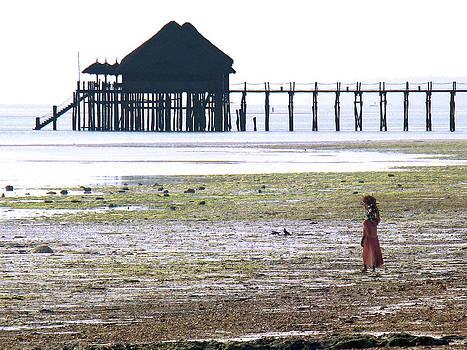 Zanzibar women 17 by Giorgio Darrigo