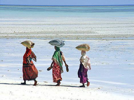 Zanzibar women 18 by Giorgio Darrigo