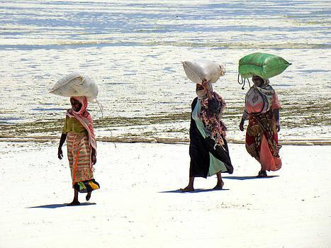 Zanzibar women 20 by Giorgio Darrigo