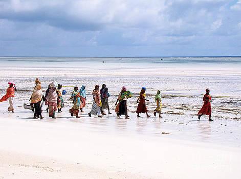 Zanzibar women 28 by Giorgio Darrigo