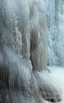 Adam Jewell - Zapata Ice Diamonds