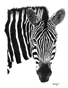 Zebra 1 by David Doucot