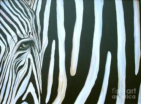 Zebra 2 by Aimee Vance