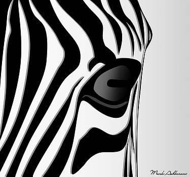 Zebra 3 by Mark Ashkenazi