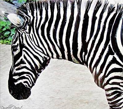 Zebra Alcohol Inks  by Danielle  Parent