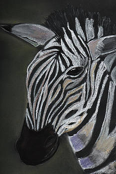 Zebra by Dorothy Riley