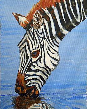 Zebra Drink by Sandra Wilson